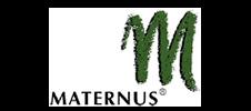 maternus